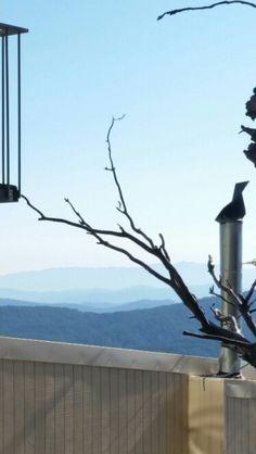 Alpine Holiday Rentals Mt Buller Holiday Rentals
