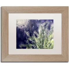 Trademark Fine Art Secrets of Nature Canvas Art by Beata Czyzowska Young, White Matte, Birch Frame, Size: 11 x 14, Brown