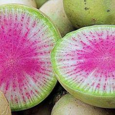 Organic Watermelon Radish Heirloom Vegetable Seeds