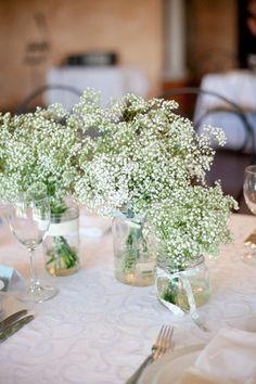 vasos, flores
