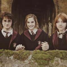 Hogwarts is my home. Harry, Hermione, & Ron are my friends. Harry Potter is my muse. Harry Potter World, Images Harry Potter, Saga Harry Potter, Mundo Harry Potter, James Potter, Harry Potter Characters, Harry Potter Love, Harry Potter Universal, Harmony Harry Potter