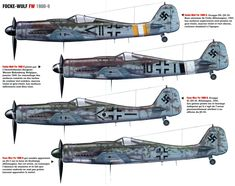 "Focke Wulf FW 190D ""Dora"""