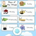 FREE Days of the Week Mini-Beasts Theme - PDF file4 page, free days of the week download from Clever Classroom. Colorful pictures of a mini-bea...