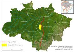 SoS Amazzonia: il governo brasiliano cede foresta alle trivelle.