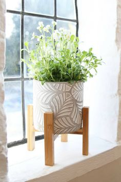 Gorgeous leaf patterned concrete flower pot. The natural wood stand creates a feature of this strikingly patterned pot.The light whitewashed finish softens the shade of the cement and accentuates the leaf surface pattern. Lush green foliage of herbs and pretty flowering plants contrast perfectly with these whitewashed round cement pots. #ad #concrete #pot #planter #flowerpot #leaf #whitewashed #cement #homedecor