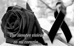 The Most Beautiful Images Of Mourning Bows For Whatsapp Blue Roses Wallpaper, Portuguese Words, Black Rose Flower, Eye Makeup Steps, Most Beautiful Images, Love Deeply, Life Is Hard, Dear God, Santa Cecilia