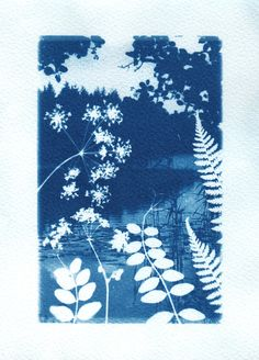 Layering images for cyanotype Sun Prints, Alternative Photography, Experimental Photography, Cyanotype, Printmaking, Art Projects, Art Photography, Textiles, Fine Art