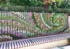 Succulent wall art                                                                                                                                                                                 More