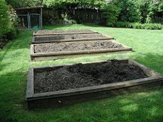 A series of raised beds in a back yard
