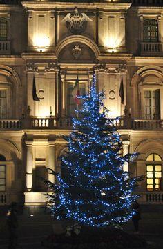 Catania, Sicily, Christmas Tree, Photo And Video, Holiday Decor, Teal Christmas Tree, Holiday Tree, Xmas Tree, Christmas Trees