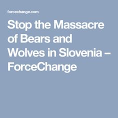 Stop the Massacre of Bears and Wolves in Slovenia – ForceChange