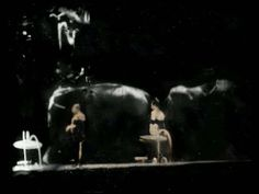 Over 800 modern dryplate tintypes were made from b&w film to produce this experimental stop-motion video of a circus.   Antonio Martinez created this video to serve as a desired  childhood memory of the circus, but through the mind of an adult.   The project began in 2005 and was fully completed in early 2010 with the help of sound designer, Ramah (Malebranche) Jihan, and assistant, Sarah (Lathrop) Midkiff. The video has been successfully exhibited in over 23 video art and film festivals.