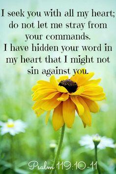 Yo te he buscado de todo corazon; ¡no dejes que me aparte de tus mandamientos! En mi corazon he atesorado tus palabras para no pecar contra ti