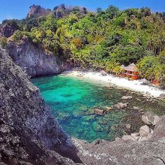 Apo Island Beach Resort - Philippines --- Photo by @ninjarod --- #apoisland #philippines