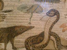 """MOSAICI POMPEIANI.  Paesaggi nilotici.  Soglia dell'esedra del """"mosaico di Alessandro"""". Casa del Fauno. (4)  Sempre sul registro inferiore della parte centrale della soglia mosaicata, sulla sinistra, si disponeva un altro """"confronto"""" tra esemplari tipici della fauna egizia: una mangusta (Herpestes ichneumon) che sfida una cobra che, sentendosi minacciato, si dispone nella caratteristica posa con le costole cervicali divaricate.  #pompeii #scavidipompei #pompeiiruins #faunopompei #pompeiviva…"""