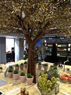 Apivita Concept Store, Athens GR
