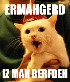 0c2323e5687483e2763f406f0d5b25d8 birthday cats its my birthday ermahgerd image gallery (sorted by score) faith, funny stuff,Ermahgerd Birthday Meme