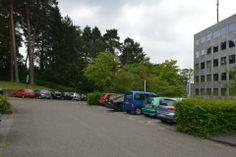 Kreishaus Rhein-Berg: BUND kritisiert Parkplatz-Pläne - Auf knapp 1060 Quadratmetern im Lerbacher Wald soll alter Baumbestand gefällt werden, um Parkplätze für Mitarbeiter und Besucher der Kreisbehörde zu schaffen. BUND-Mitglieder fordern eine andere Lösung.