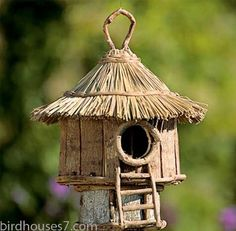 Building-Bird-Houses-2
