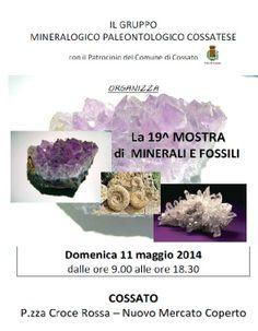 Domenica 11 Maggio 2014, dalle ore 9.00 alle ore 18.30, si svolgerà a Cossato la 19a  Mostra di Minerali e Fossili, presso il nuovo Mercato Coperto, Piazza Croce Rossa.