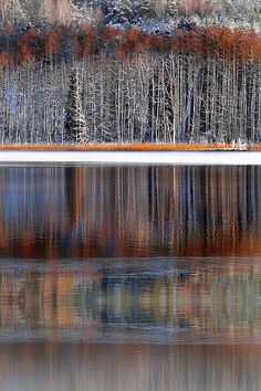 ✯ Winter Reflections - Regional Park, Lithuania