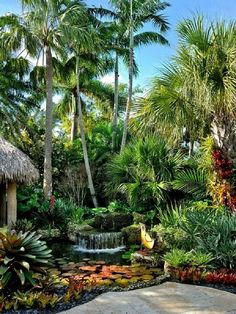 ✔️ Fun Backyard Landscaping Idea How About An Exotic, Tropical Backyard Resort 19 Tropical Backyard Landscaping, Tropical Garden Design, Landscaping With Rocks, Front Yard Landscaping, Tropical Plants, Landscaping Ideas, Tropical Gardens, Tropical Outdoor Fountains, Backyard Plants