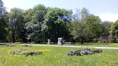Park Kultury i Wypoczynku