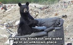 Random LOL Funny (01:37:09 AM, Monday 30, March 2015 PDT) – 10 pics
