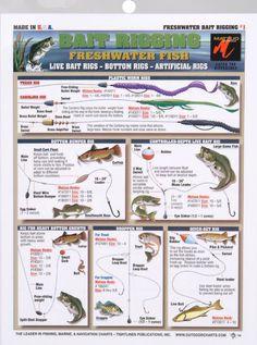 bait_rigging_chart_freshwater_br_73040big.jpg (633×851)