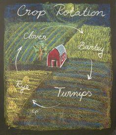 3rd Grade-Farming
