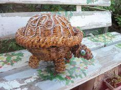 черепаха из газет))