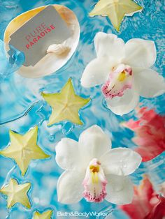 A summer-chic blend of sparkling star fruit & ocean-kissed frangipani blossoms. #PureParadise