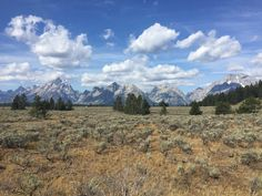 Best picture I've taken. Grand Tetons in WY [OC][3264x2448]