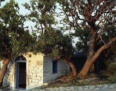 Samothraki  Therma Greek Islands, Places, Travel, Home Decor, Greek Isles, Greek, Viajes, Decoration Home, Room Decor