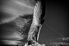 Eamonn Doyle | Michael Hoppen Gallery