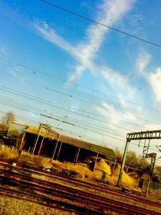 Milton Keynes, Vineyard, Beans, London, Outdoor, Outdoors, Vine Yard, Vineyard Vines, Outdoor Games