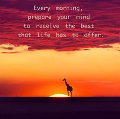 Every Morning * Your Daily Brain Vitamin v3.3.15   This morning, get yourself ready for what the day has to offer. And expect it to be good! Today is a good day for a good day.   Motivational   Inspirational   Life   Love   Quotes   Words of Wisdom   Quote of the Day   Advice  