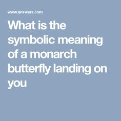 What is the symbolic meaning of a monarch butterfly landing on you