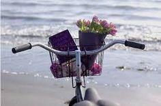paseo en bicicleta - Buscar con Google