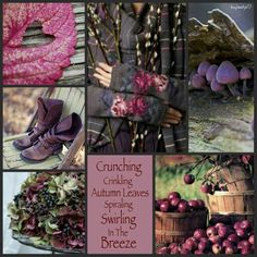 Crunching, crinkling autumn leaves, spiraling, swirling in the breeze. #moodboard #mosaic #collage #inspirationboard #byJeetje♡