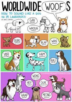 Comparaison des cris des animaux dans les autres langues (illustrateur James Chapman)