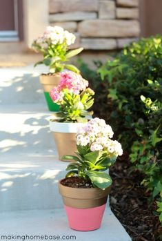 Transform boring terra cotta #flower pots with a little paint. @Chelsea Rose @ Making Home Base
