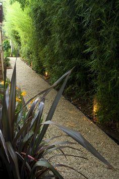 bamboo edging