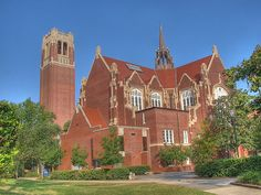 University of Florida <3