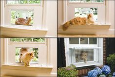 Petsafe Cat Veranda Terrace Porch Perch Cat Door Window