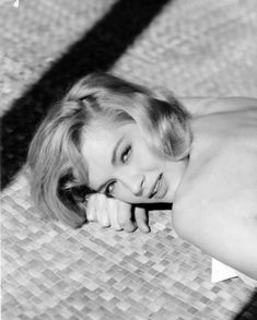 Picture of Angie Dickinson Film Rio, Gloria Grahame, Angie Dickinson, Star Wars, Western Film, Classic Actresses, Old Tv Shows, New Star, Vintage Hollywood