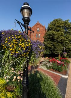 Short on space? A hanging basket is the perfect solution if you're lacking in square footage. This simple but colorful summer arrangement gussies up a lamppost next to the Smithsonian Castle.