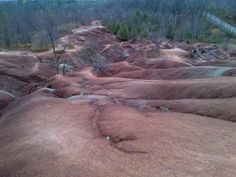 Days Out Ontario offers the best way to build and plan trips within Ontario. Find places to stay, places to eat and things to do - then build your itinerary to take with you on the go! Cheltenham Badlands, Days Out, Quebec, Trip Planning, Ontario, Toronto, Places To Go, Things To Do, Bucket