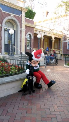 Service dog with Mickey! My heart melted
