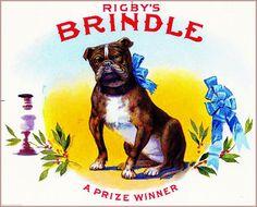 Rigby's Brindle Pit Bull Terrier Dog Smoke Vintage Cigar Box Crate Label